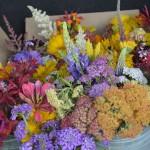 brills flowers1